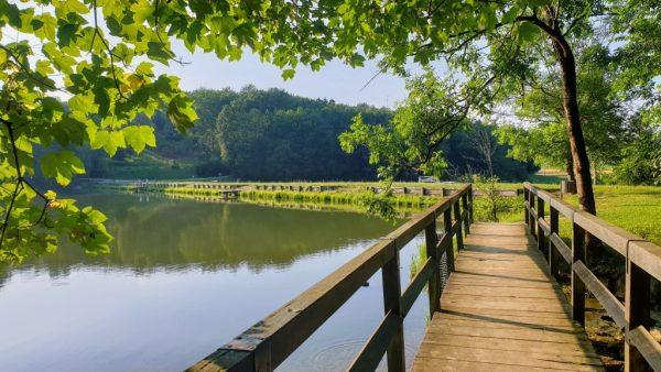 Lake Blagusa - the lake that welcomes you