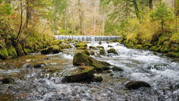 Source of Kamniška Bistrica - an emerald lake that invites under a stone bridge
