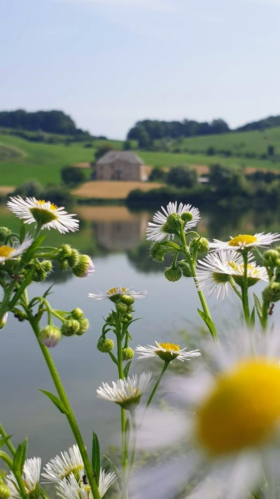 Pernik Lake - Lake with beautiful reflections of the house and the rolling hills