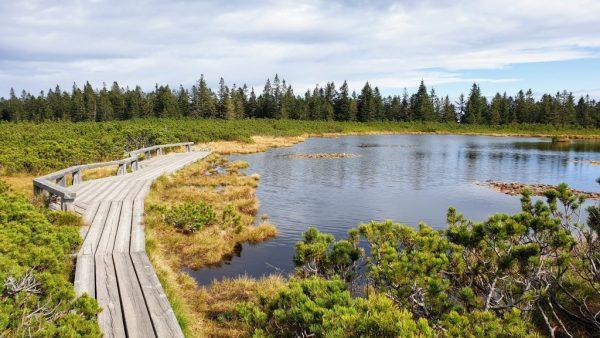 Lovrenska lakes - lakes that laugh at hail, illuminated in the sun
