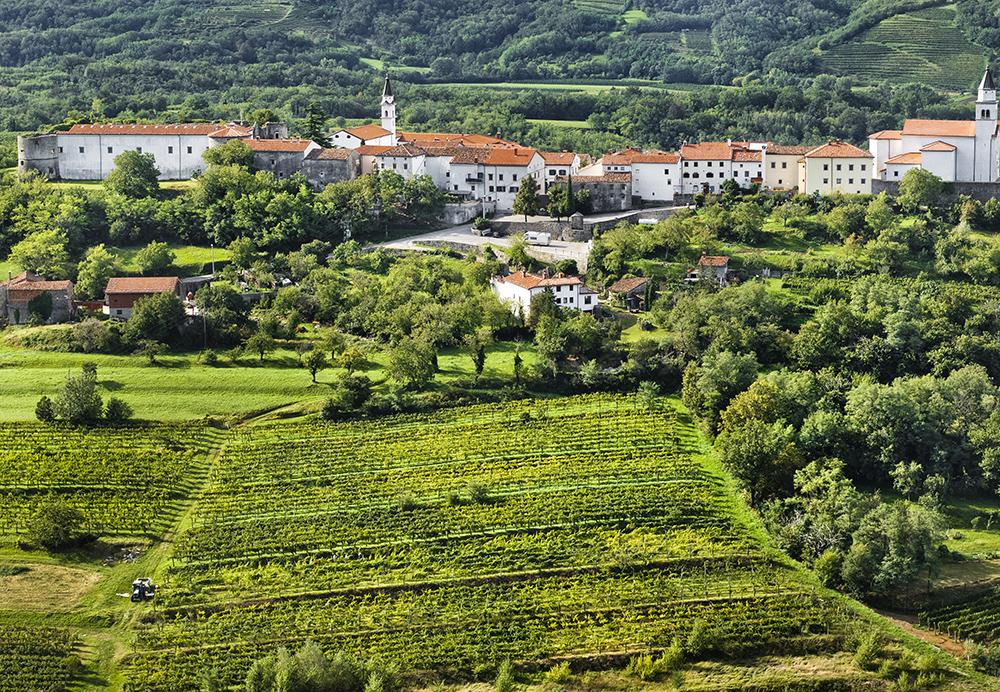 Don't get blown away while wine tasting in the Vipava Valley