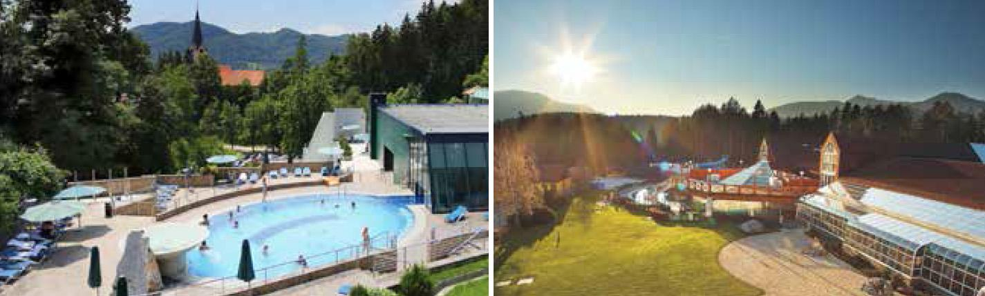 Top 10 slovenia SPA RESORTS