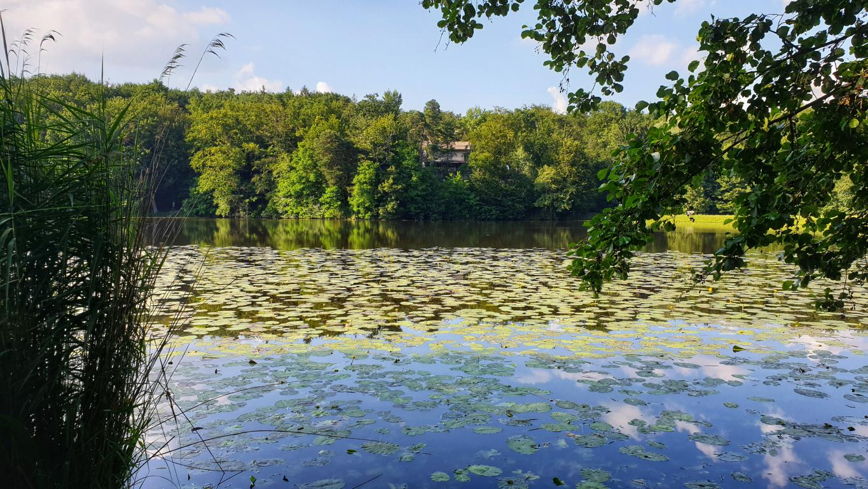 Negovsko jezero moja jezera manca korelc 6