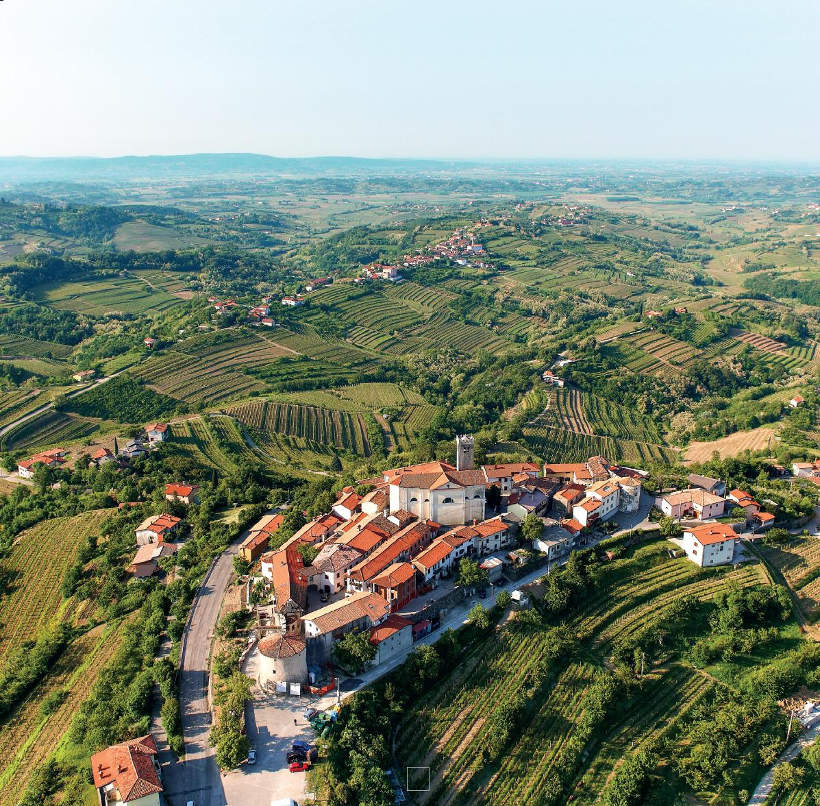 goriška brda top wine destination