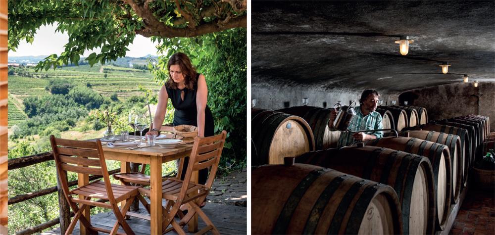 klinec wine medana