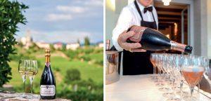 medot winery giršika brda