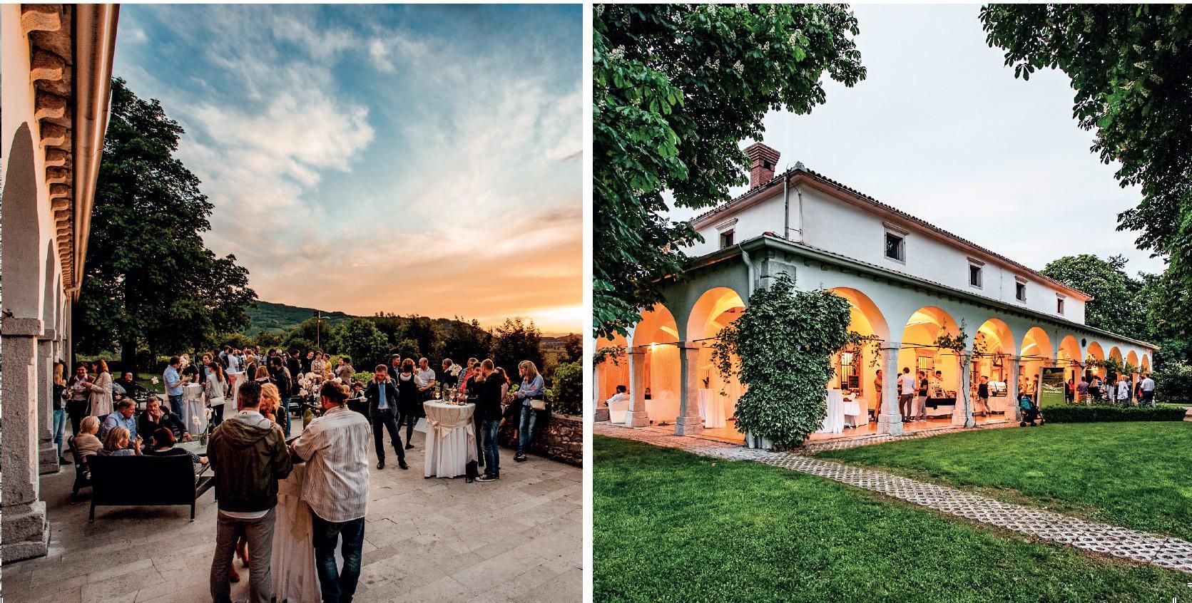 dvorec zemono winery