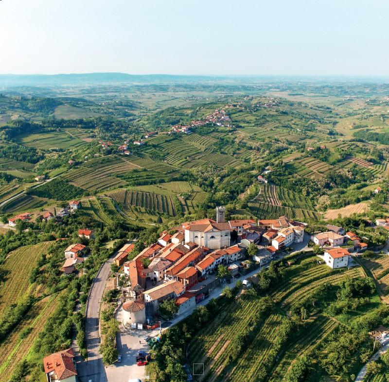 goriška brda slovenia wine region