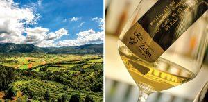 vipava winery