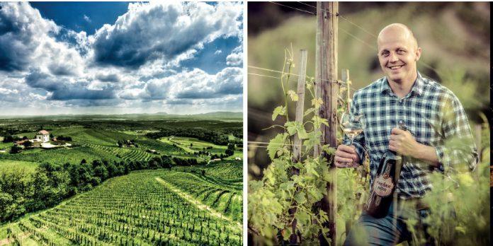 frešer winery