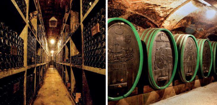 ptuj winery