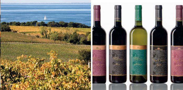 Wina Koper Winery