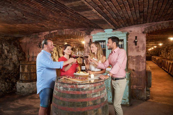 Top Slovenian wine modra frankinja Blaufränkisch