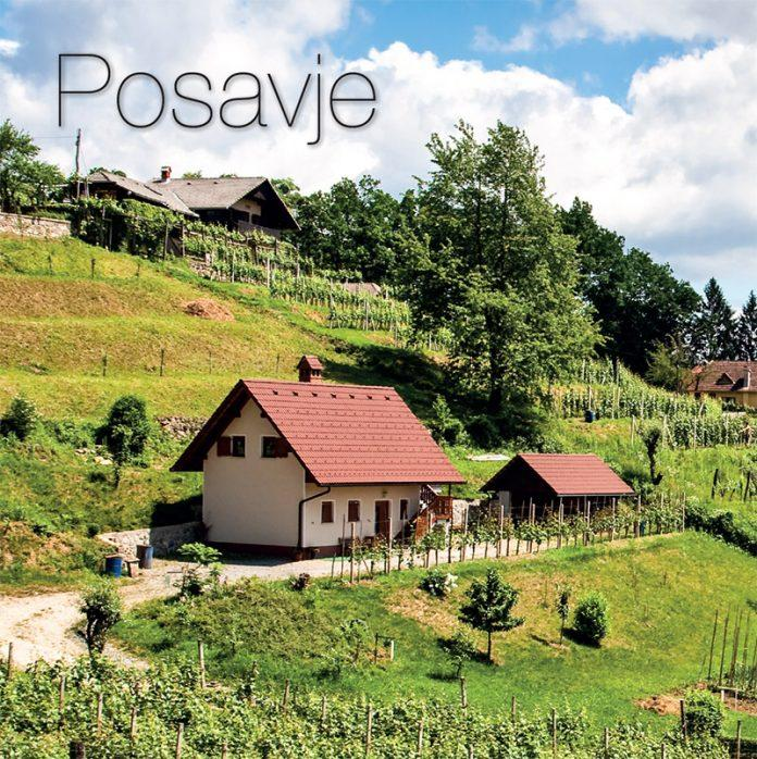 Posavje wine region